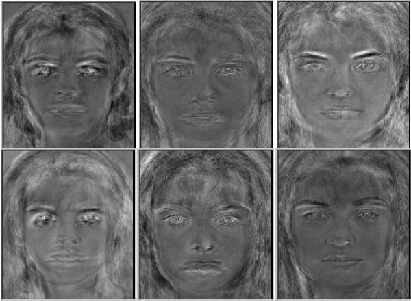 Eigenfaces corresponding to unalligned and alligned images.