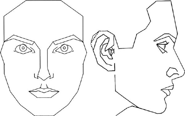 The outline of the Stephen Marquardt Phi (Golden ratio) mask.