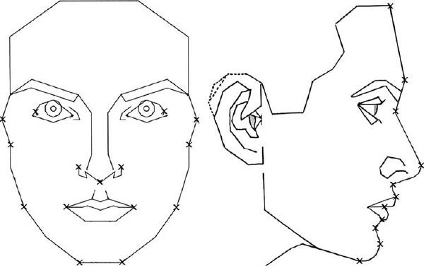 Landmarks used to compare face shapes with Marquardt's mask.