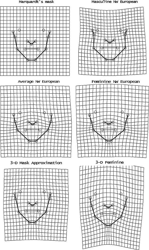 Thin plate splines showing how Marquardt's mask can be deformed to transform it to various faces addressed in Table 1.