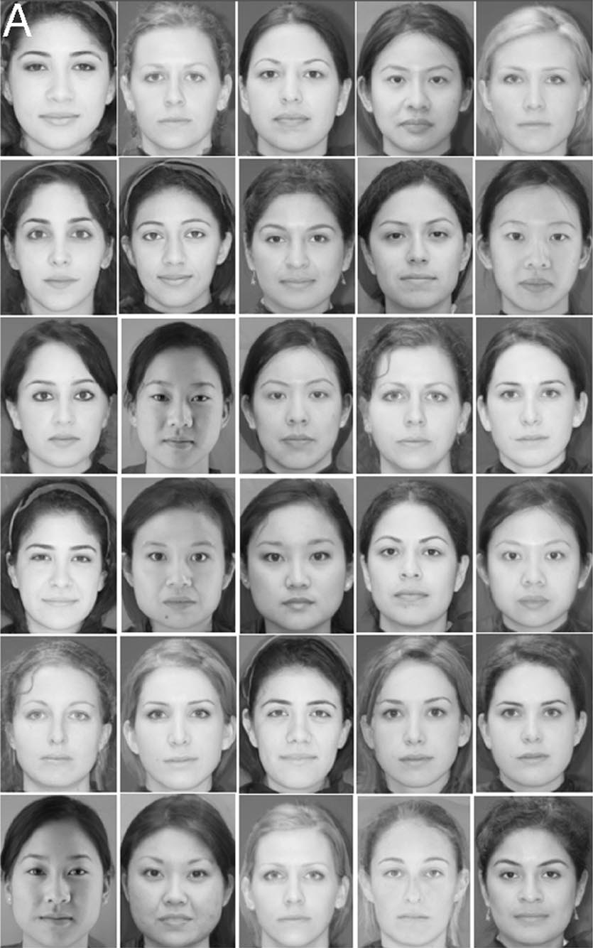 Obtaining more attractive faces using a genetic algorithm