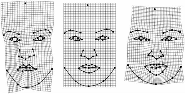 Change in face shape associated with increasing attractiveness in women.