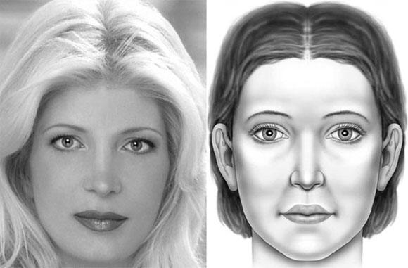 an attractive North American white female contrasted with the average North American white female