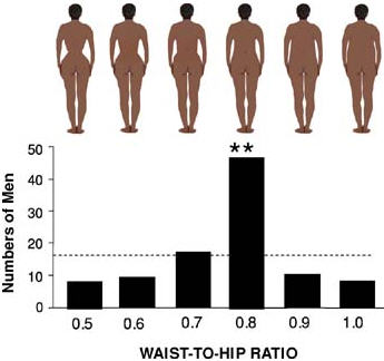 The number of central African men (Bakossiland, Cameroon) most strongly preferring a given WHR when asked to pick the most sexually appealing form and the form most attractive in a woman that is a potential long-term partner.