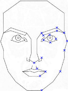 Stephen Marquardt Phi mask outline with landmarks shown on one side.