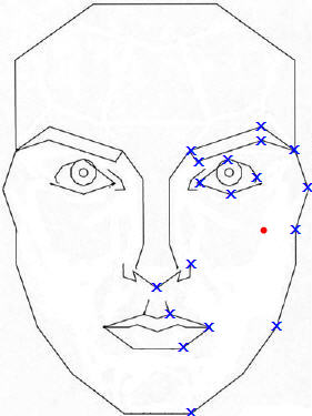 Stephen Marquardt Phi mask outline with landmarks shown on one side; used to illustrate how to find centroid.