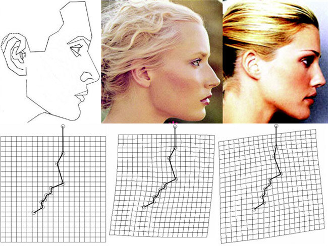 Thin plate splines in reference to Marquardt's profile mask and two fashion models.