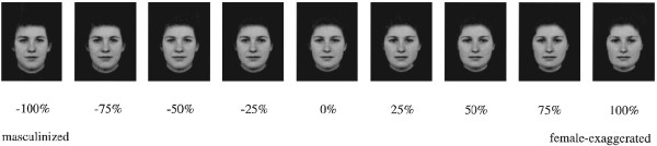 Manipulation of an average white female face.