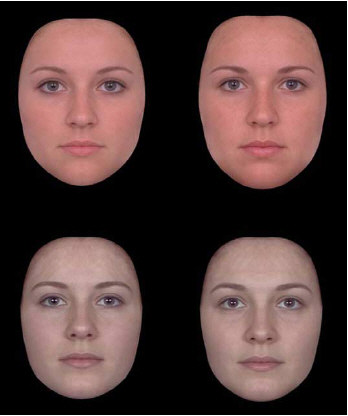 Facial prototypes constructed from women with high- and low-pitched voices.