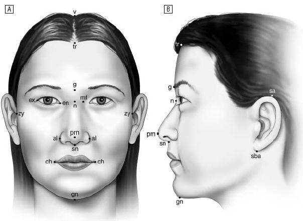 Frontal and lateral views of the average Korean American woman's face.