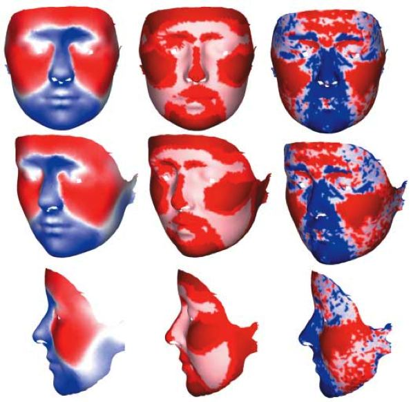 Facial sexual dimorphism assessed via 3D laser scanning and geometric morphometrics.